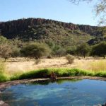 010-waterberg-wilderness-lodge