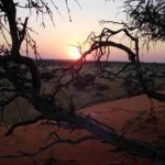 503-kalahari-anib-lodge